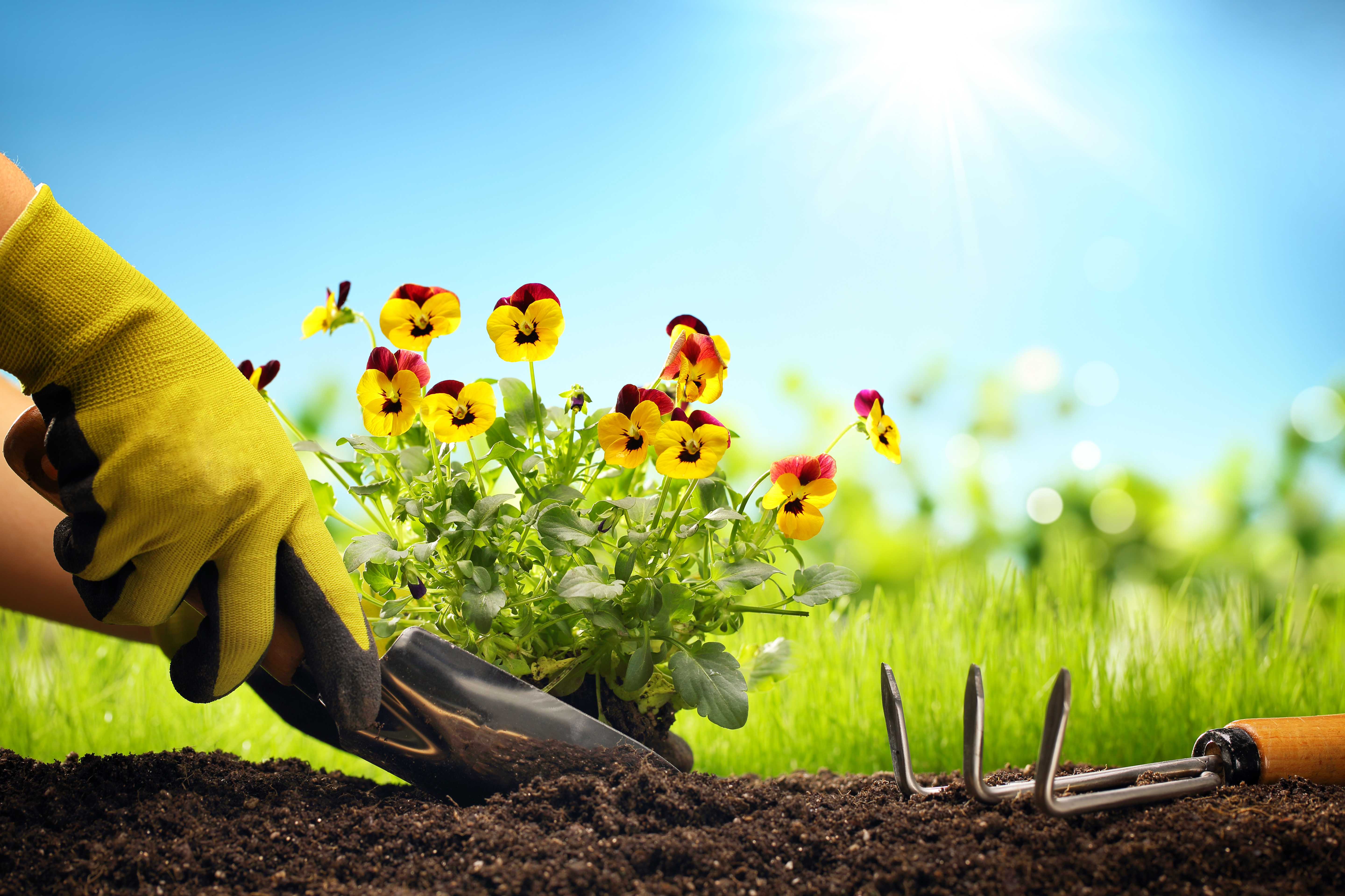 eight trends in church planting part two � luminex