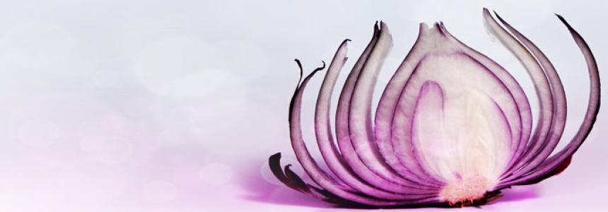 peel back the onion